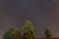 Nächtlicher Himmel mit Sternen und Bäumen unten im Winter in Darjeeling Indien Lizenzfreie Stockfotos