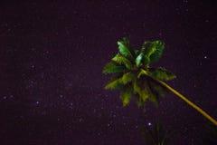 Nächtlicher Himmel - Papua-Neu-Guinea stockfotos
