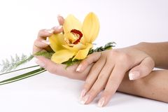 Nägel mit Blume lizenzfreies stockbild