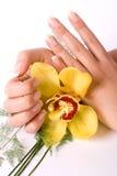 Nägel mit Blume Lizenzfreie Stockbilder