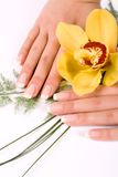 Nägel mit Blume Stockbilder