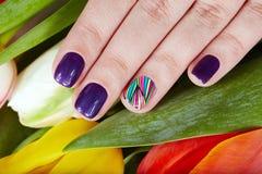 Nägel mit schönen Maniküre- und Tulpenblumen Lizenzfreies Stockfoto