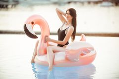 När du bedövar den sexiga kvinnan bär svart bikinisammanträde i simbassäng med blått vatten på en rosa flamingomadrass royaltyfri foto
