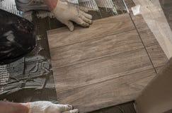 När du lägger tegelplattan stiliserade trädet på det isolerade golvet Arkivfoton