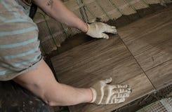 När du lägger tegelplattan stiliserade trädet på det isolerade golvet Royaltyfri Foto