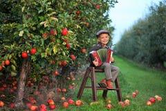 När du ler pojken spelar dragspelet i en äpplefruktträdgård arkivbilder