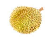Nära övre för Durian Arkivfoto