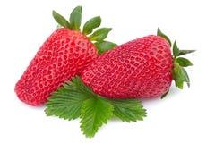 Nära övre för jordgubbe Arkivbilder