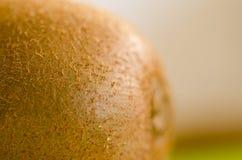 Nära övre hårig sund saftig kiwi för makro royaltyfri bild