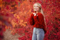 Nära övre stående av en härlig flicka nära färgrika höstsidor fotografering för bildbyråer