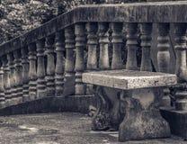 Nära en tempel Koh Phangan, Thailand royaltyfri bild