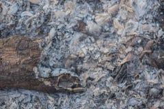 Nära sikt av askaen från den wood bränningen som en abstrakt bakgrundstex Arkivfoton