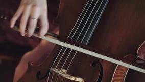 Nära sikt av den kvinnliga violoncellisten som spelar på raderna med fiolstråke stock video