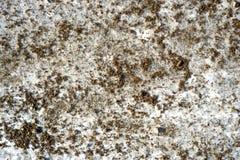 Nära sikt av en sandpapprad iskall väg Royaltyfria Bilder