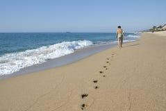 Nära stranden Fotografering för Bildbyråer