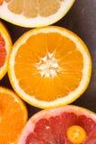 Nära upp bästa sikt av härlig variation av det nya citrusfrukthalvasnittet Apelsiner citroner, clementine, röd grapefrukt royaltyfri bild