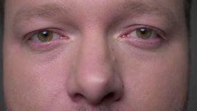 Närbildögonstående av den medelåldersa affärsmannen för brunett som fast håller ögonen på in i kamera på grå bakgrund lager videofilmer