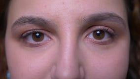 Närbildögonstående av denhaired studenten för ung brunett som fast och allvarligt håller ögonen på in i kamera lager videofilmer