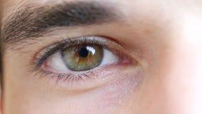 Närbild av ögat för ung man stock video