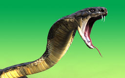 Närbild av attack för orm för kobra för konung 3d Arkivfoto