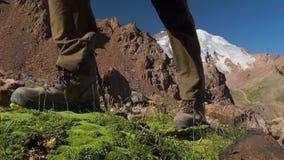 Närbild av benen av en turist som går i bergen arkivfilmer