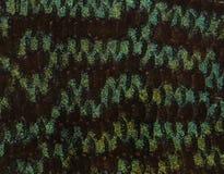 Närbild av blåa snakeskindiskusars hud arkivfoton