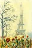 Närbild av blommande tulpan i den Trocadero fyrkanten i Paris Royaltyfri Foto