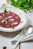 Närbild av borscht som göras med nya ingredienser Royaltyfri Bild