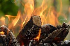 Närbild av brinnande stycken för brand av trä på en grön bakgrund Arkivbild