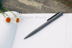 Närbild av dagboken och pennan som ligger på gräset Romantik deras tanke royaltyfri bild