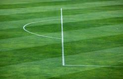 Närbild av den randiga modellen på gräs- fotbollfält Royaltyfria Foton