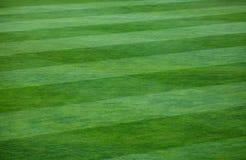 Närbild av den randiga modellen på gräs- fotbollfält Royaltyfri Fotografi