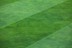Närbild av den randiga modellen på gräs- fotbollfält Fotografering för Bildbyråer