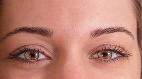 Närbild av den unga kvinnan med ljusa ögon Royaltyfri Bild