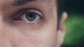 Närbild av det gröna ögat för ung man som är utomhus- på grön naturbakgrund lager videofilmer