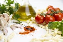 Närbild av det italienska typiska pastareceptet: handgjord pasta för durumvetemjöl, tomater, vitlök, extra jungfrulig olivolja, j royaltyfri bild