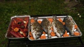 Närbild av Dorado med kryddor och grönsaker Arkivfoton