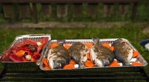 Närbild av Dorado med kryddor och grönsaker Royaltyfria Foton