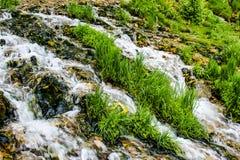 Närbild av en bergström med grönt gräs royaltyfri bild