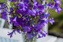 Närbild av en enkel bukett av lösa blommor i en glass vas som står på en tabell på en solig morgon Royaltyfri Bild