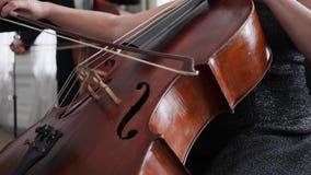 Närbild av en kontrabas med enpilbåge, kvinnlig hand som spelar på instrumentet arkivfilmer