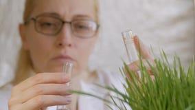 Närbild av en kvinnlig forskare i en labb som häller klar flytande in i en provrör bredvid ett växande grönt gräs stock video