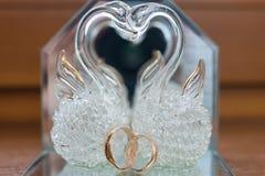 Närbild av en smyckenask med vita guld- cirklar Fotografering för Bildbyråer