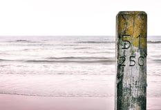 Närbild av en träpelare eller hög på stranden Royaltyfri Fotografi