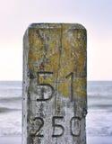 Närbild av en träpelare eller hög på stranden Arkivfoto