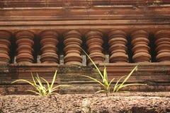 Närbild av ett avsnitt av en kambodjansk monument med växter som växer på den royaltyfri bild