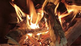 Närbild av flamman av det brinnande björkträt i en panna stock video