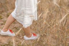 Närbild av fot som går på det guld- vetet på den soliga dagen tycka om naturen Härlig flicka i strålarna av solljus royaltyfri fotografi