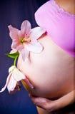 närbild av gravid kvinnas buk i en purpurfärgad klänning med härliga blommor Arkivfoton