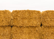 Närbild av guling staplade höbaler Fotografering för Bildbyråer
